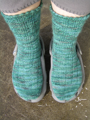 Toasty toes Socks