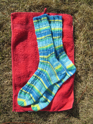 Rib and Cable Socks in Regia Canadian Fashion Vancouver